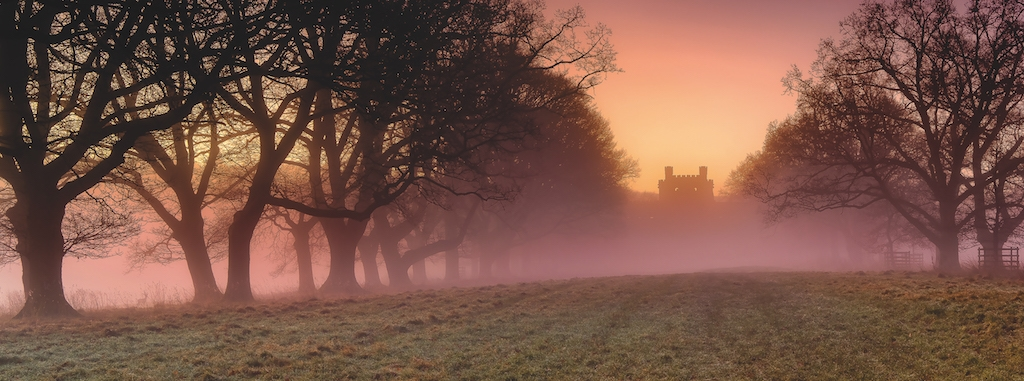 Askham-based Fine Light images submitted this atmospheric photo of Lowther Castle through an avenue of trees.