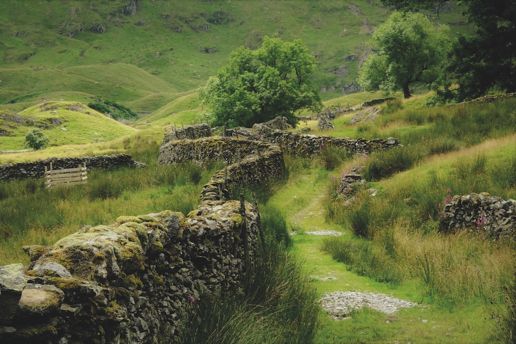 Dry stone walls at Swindale by Simon Cove.