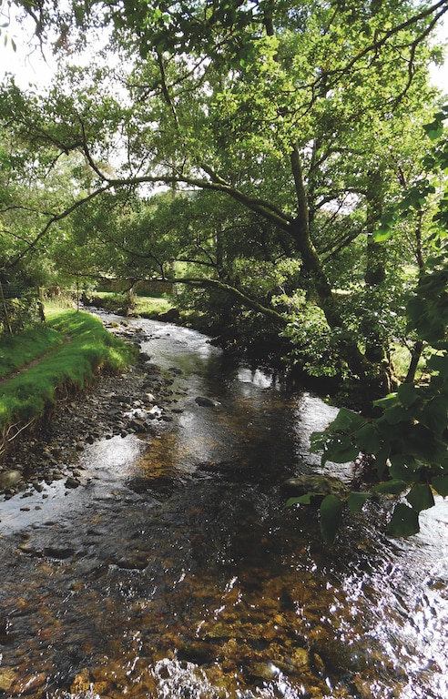 George Dudson, of Penrith, took this lovely shot of Sandwick Beck with overhanging trees.