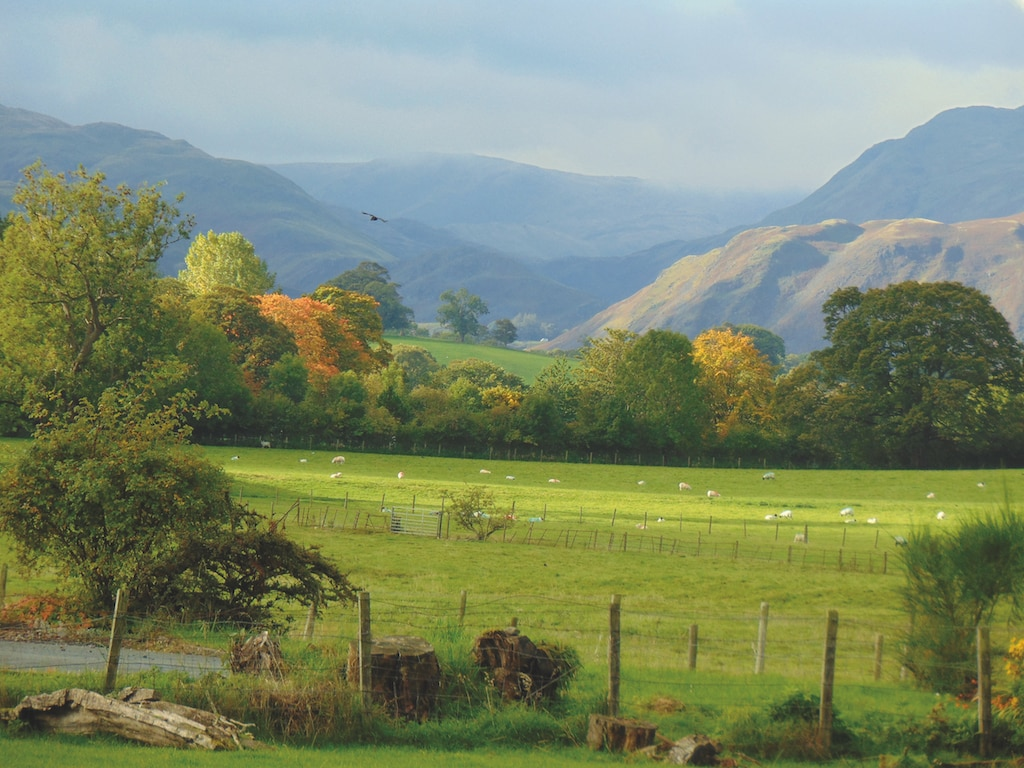 Taken on a walk from Pooley Bridge by Caroline Shaw, of Bleatarn