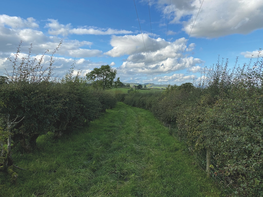 Bridleway south Clifton looking back towards Penrith in the late September sun by Gordon Rigg, of  Brougham,