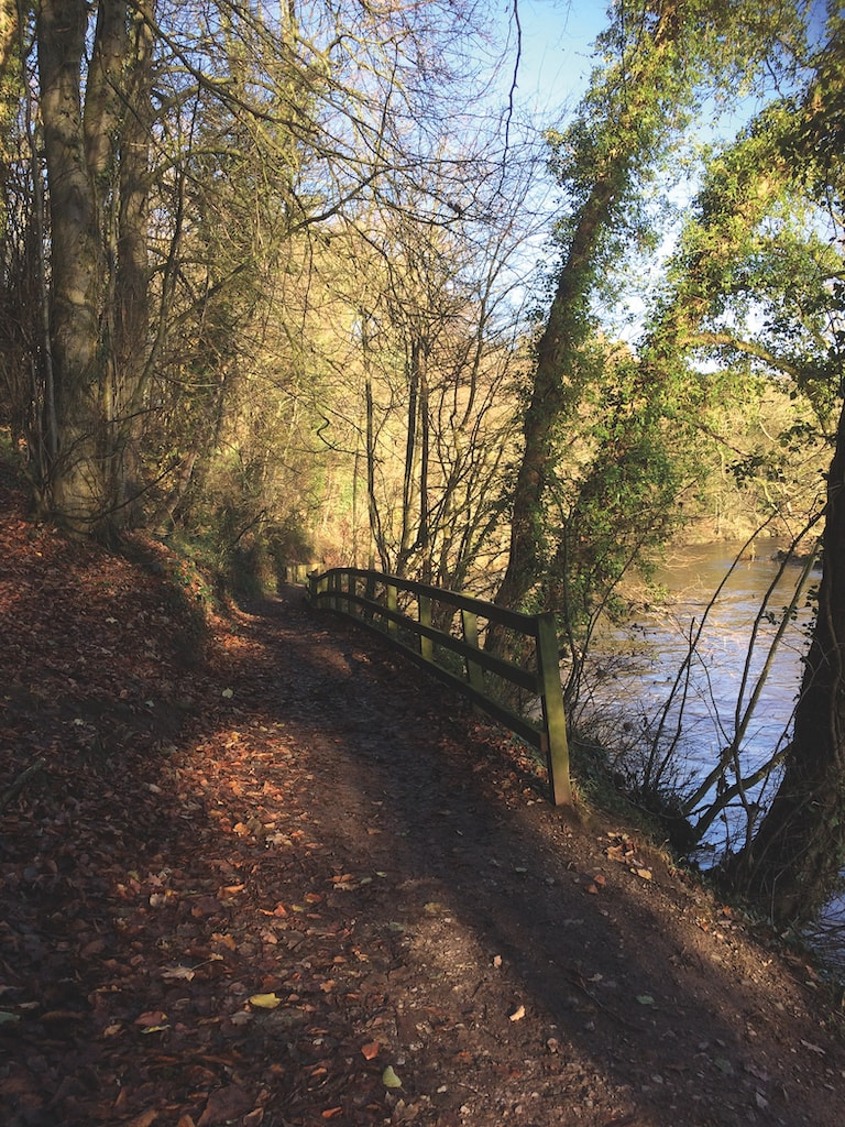 The river path by the Eden at Appleby was photographed by Lesley Kemp.