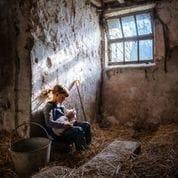 Rosie's Lamb by Amy Bateman
