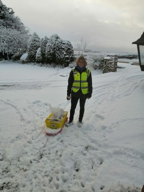 Clare Farley Morrisons home delivery.. Norwegian style!
