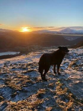 Helen Ashley sunrise at Catbells