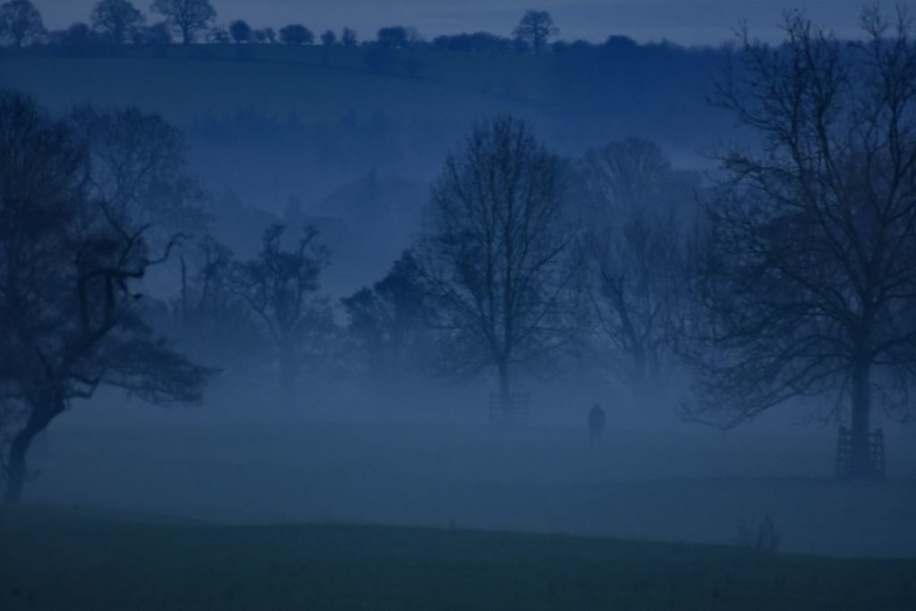 Will Hurst, low lying mist over the banks of the Eden outside Lazonby